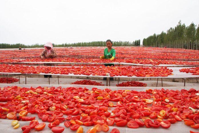pomodori cinesi