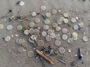 dischetti plastica spiagge