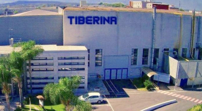 Tiberina