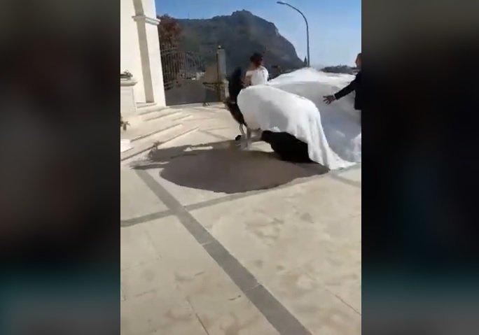 Palmi, cavallo stramazza al suolo con la sposa per il caldo